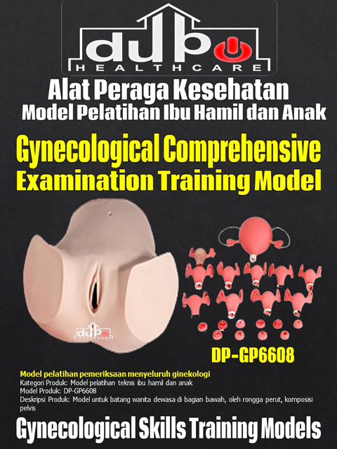 Phantom Gynecological Comprehensive Examination Training Model DP-GP6608 DuPo Healthcare